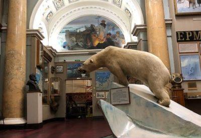 Музей Арктики и Антарктики (4 часа)